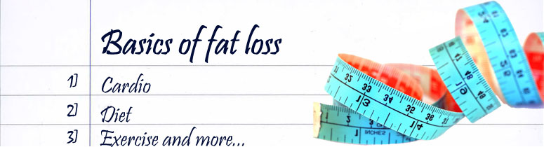 basics of fat loss